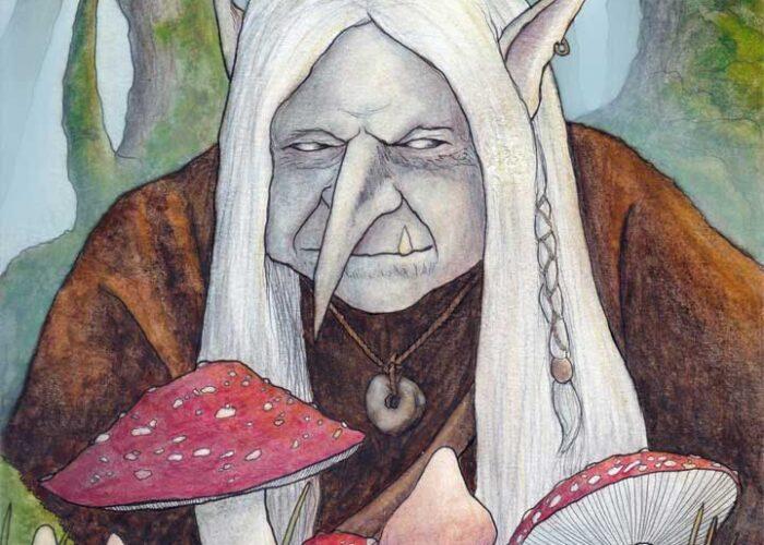 Mushroom Troll by Bard Algol